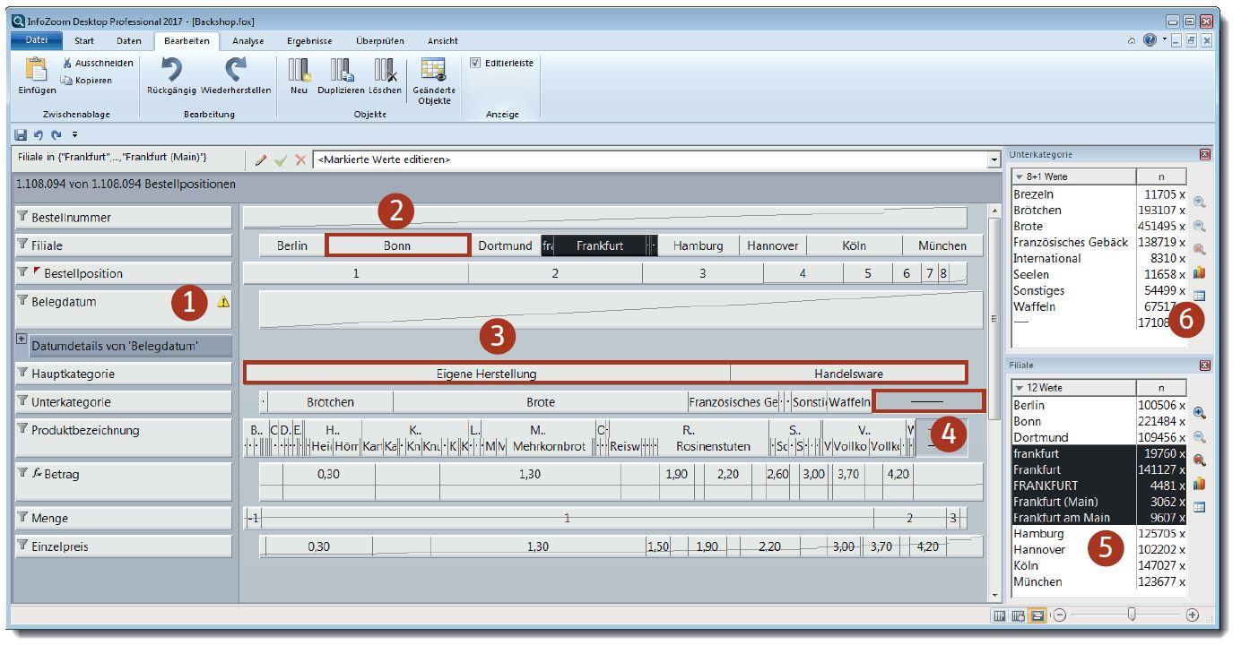 Ansicht Datenqualität Datenanalyse Software infoZoom