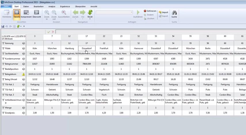 Screenshot InfoZoom Tabellenansicht