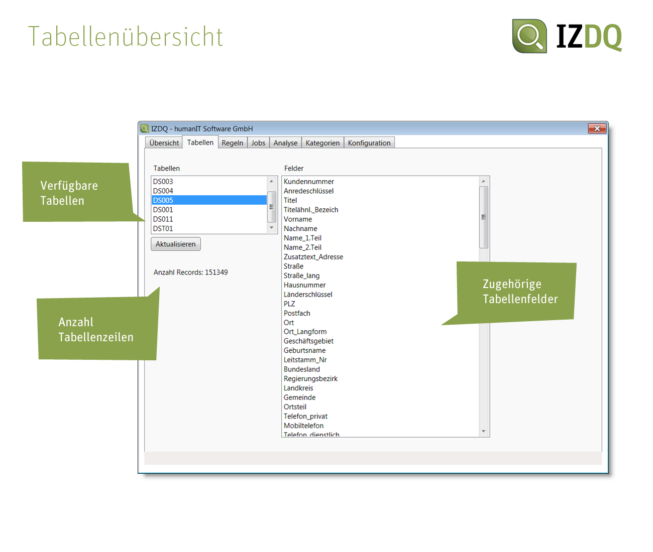 Screenshot IZDQ Tabellenübersicht