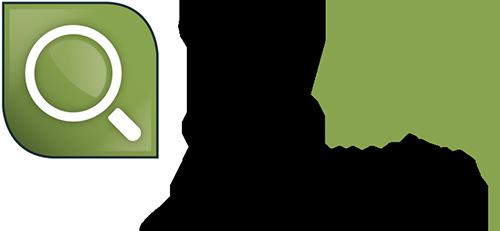 Logo InfoZoom IZDQ