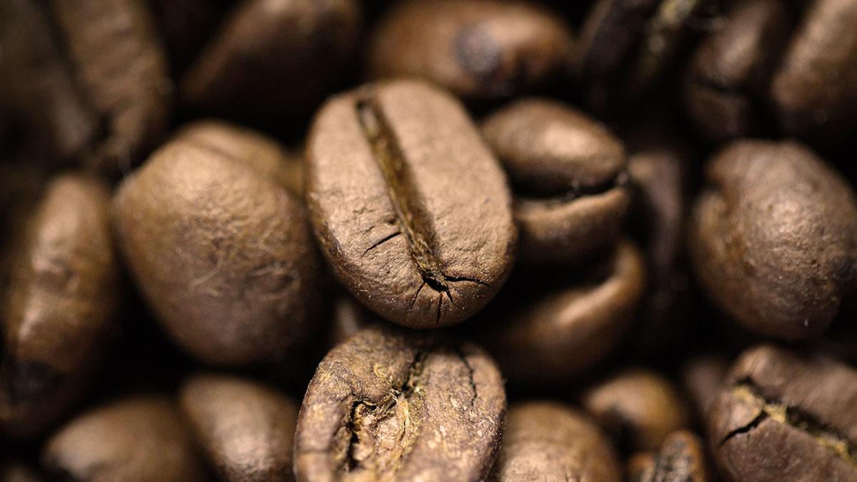 Titelbild AWB holly Kaffeebohnen