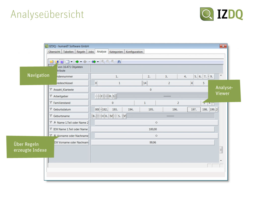 Keep An Eye On Data Quality With Automated Rule Sets Infozoom Circuit Screenshot Izdq Analysebersicht
