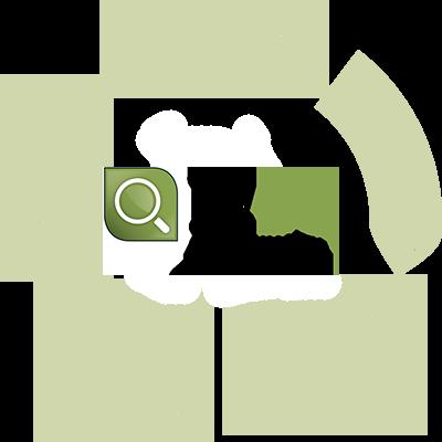 Datenqualität Kreislauf IZDQ